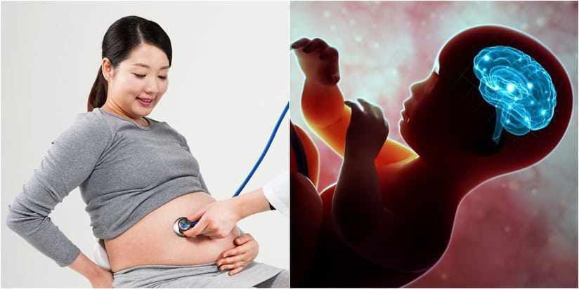Hiện tượng thai nhi rung trong bụng mẹ